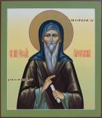 Образ святого Феодора Начертанного