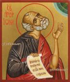 Пророк Иоана, рукописная икона артикул 6212