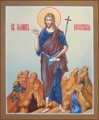 Иоанн Креститель Предтеча купить икону артикул 547